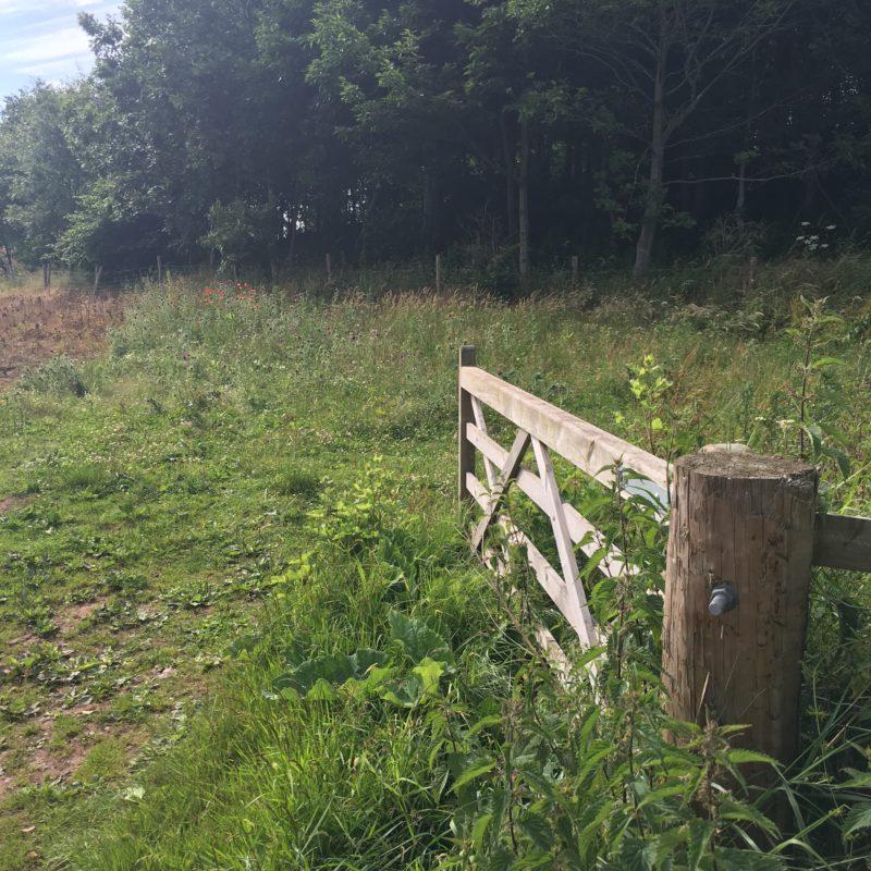 English Countryside Shropshire